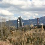 Photo: Landscape